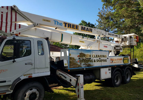Ulladulla tree removal